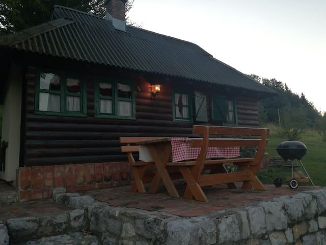 Cosy mountain cottage ( National park Tara )