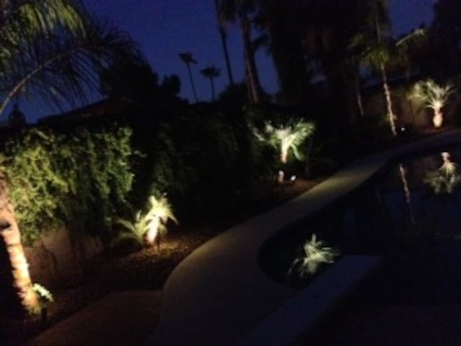 Back landscaping with lighting