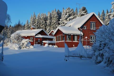 Mysig stuga nära Hassela ski resort och naturen.