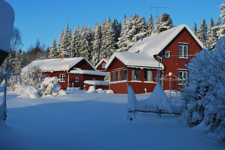Nice Cabin close to Hassela Ski Resort and nature