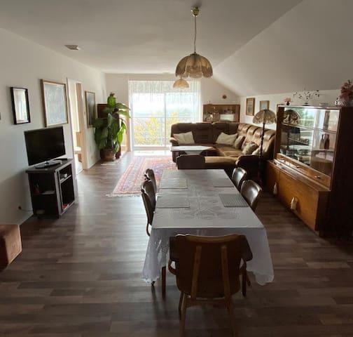 Útulný byt v domku se zahrádkou blízko centra