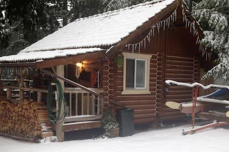 Creekside Cabin - Maple Falls - Zomerhuis/Cottage