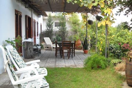 Casa dell'Oleandro - Torre Faro - Apartamento
