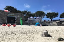 Bike, Kayak, Stand Up paddle board rentals at Lovers Point Beach
