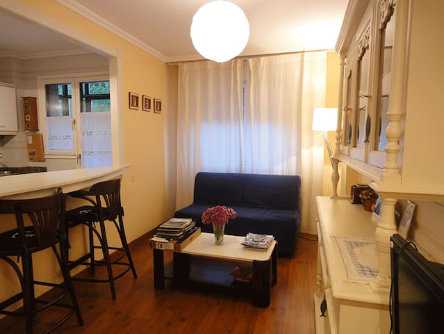 Welhome Palacio Valdés - Ribadesella - Lägenhet