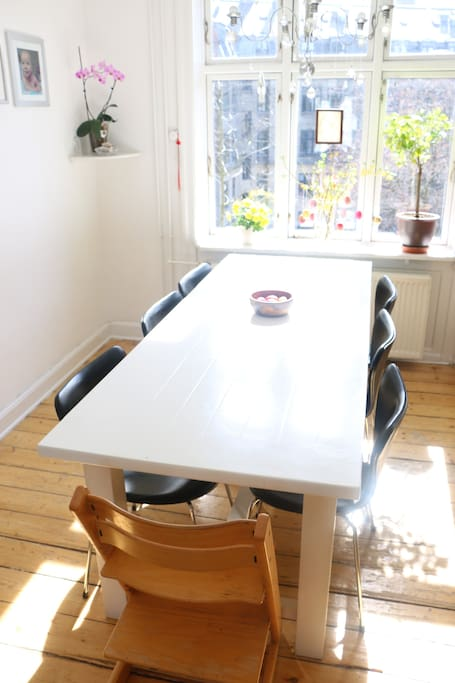 8 persons dining table with leather covered chairs