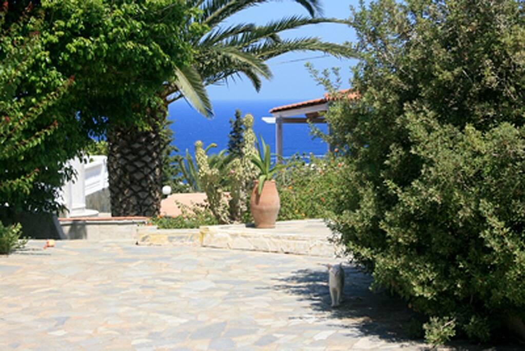 Der Hof  und Weg zum Strand