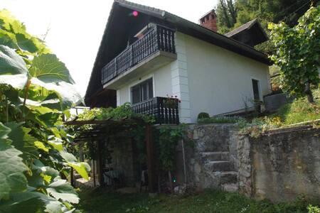 Vineyard cottage Zajc - Semič