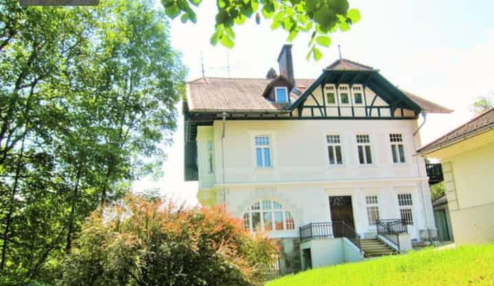 Appartement Ambiente 50m2 Balkon Parkblick