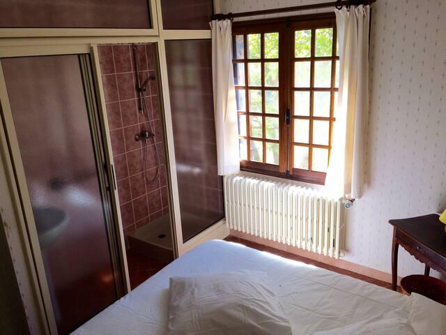 Salle de douche de la chambre