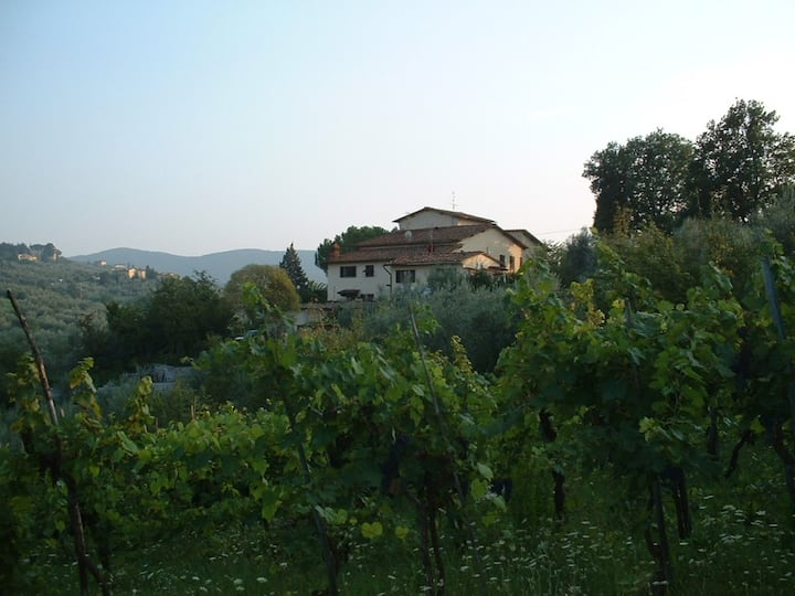 Villa on the hills of Florence