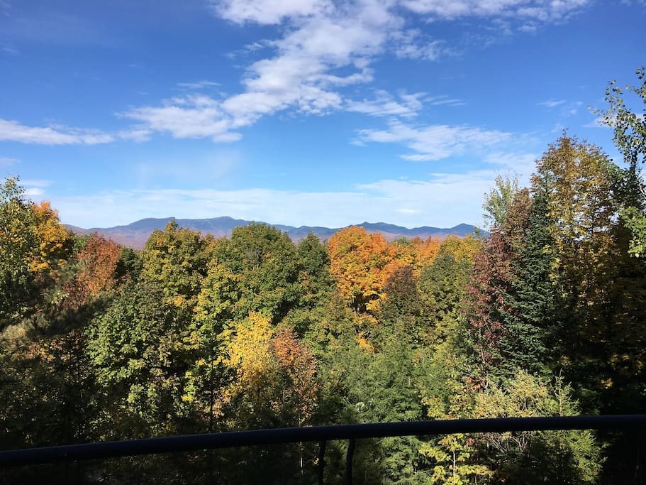 Fall view outside of living room deck