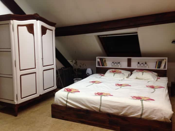 Cozy accomodation studio near Ribaucourt Station