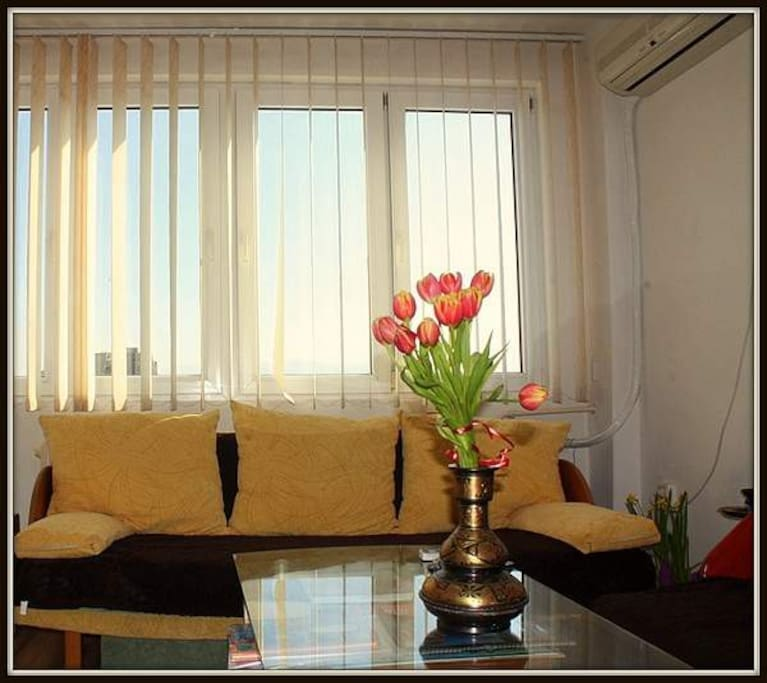The sunny living room which will be your room