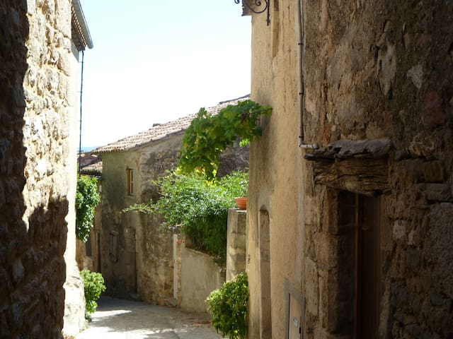 Beautiful House in Medieval Village - Caunes-Minervois - House