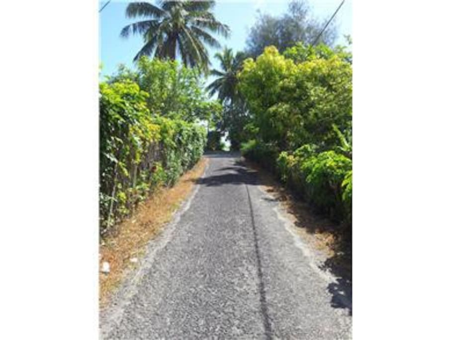 Road down to beach