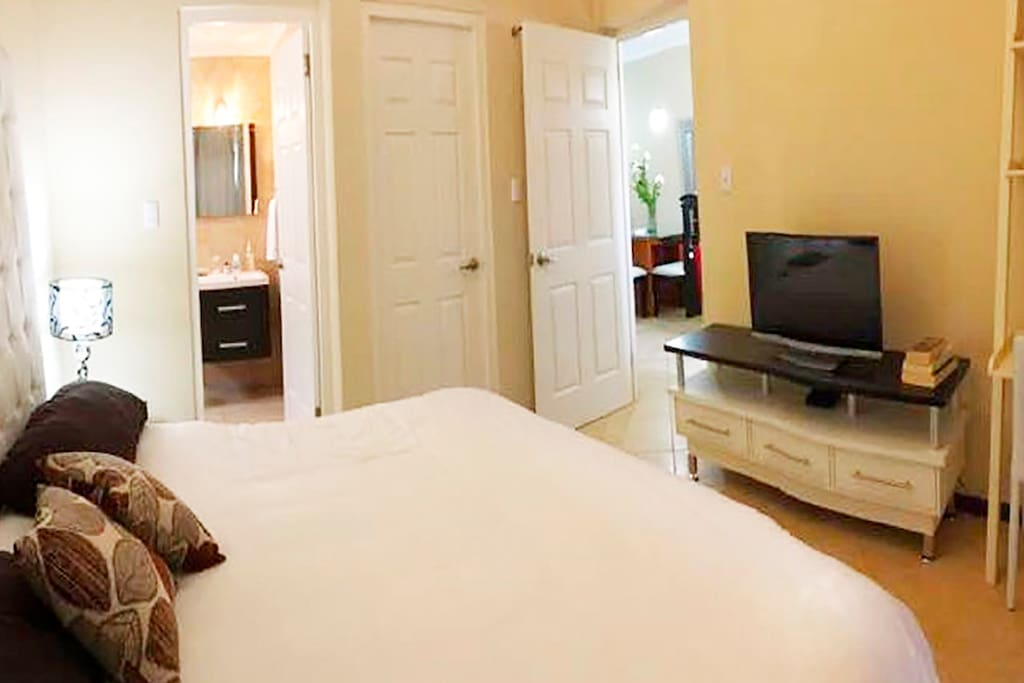 Main bedroom with private bathroom, TV and closet