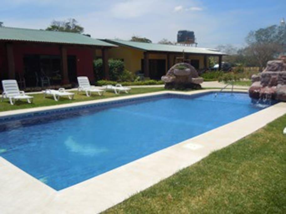 Nuestra refrescante piscina, rodada de un bello jardin