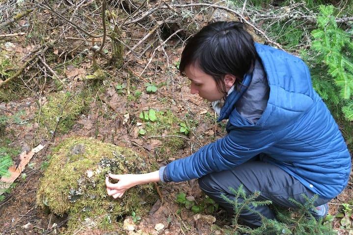 """Cette cliente a découvert une hépatique lors de l'activité """"Découverte Forêt Boréale"""". Cette activité a pour but de vous faire comprendre le fonctionnement de la forêt boréale . Très, très intéressant ! À découvrir..."""