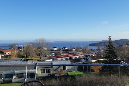 Stunning views of the Fjord 45 minutes from Oslo.