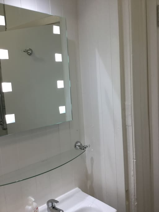 Steam free Illuminated Mirror