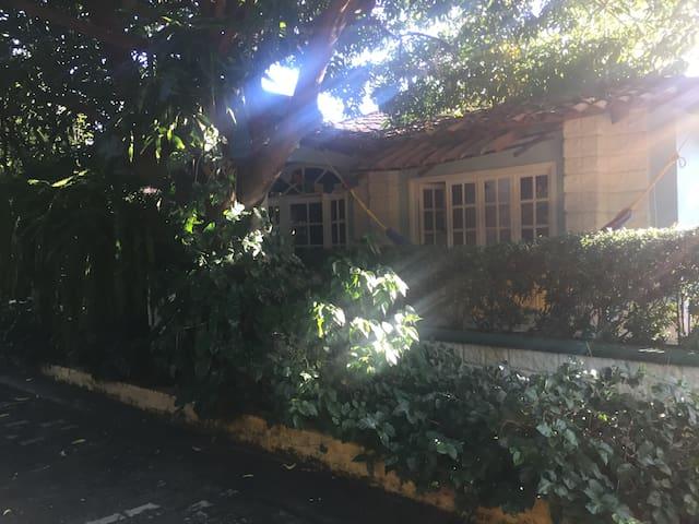 Casa Helecho
