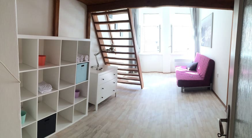 Central located apt.-10 minutes walking2CityCenter - Praha - Pis