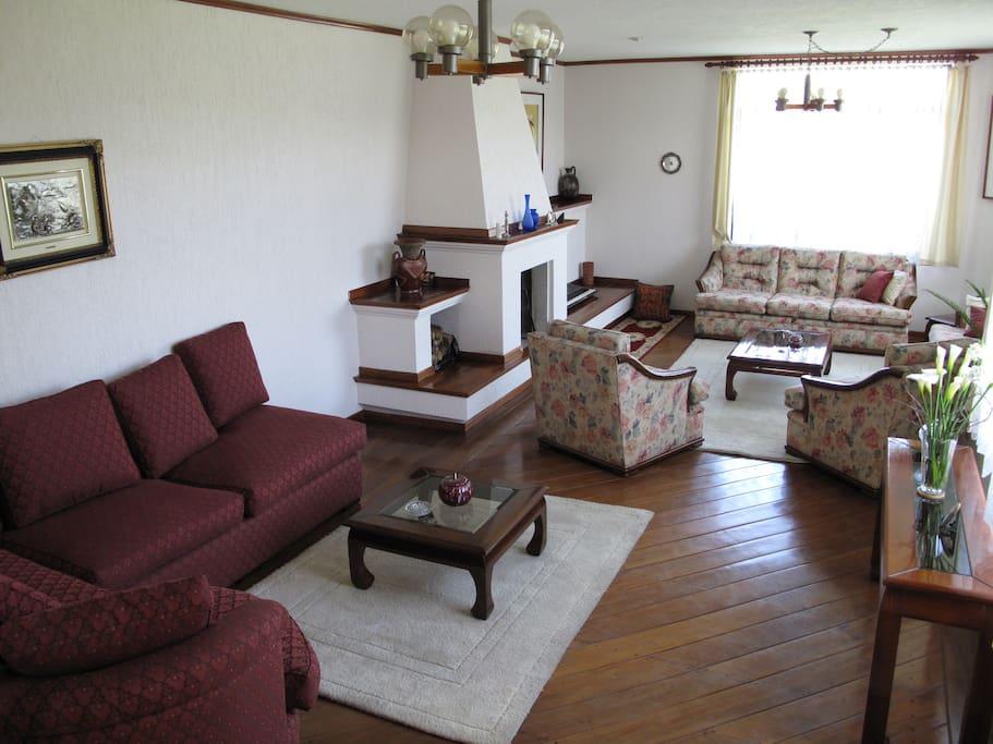 Sala de estar amoblada con chimenea