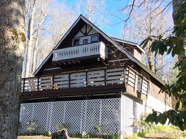 Beautiful Mountain Chalet at Linville Land Harbor