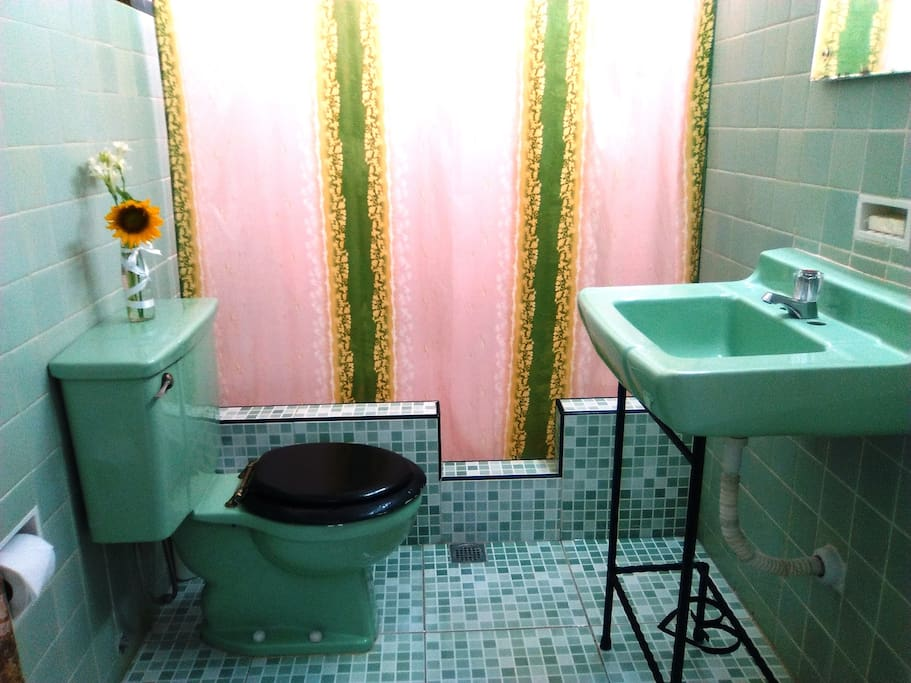 Bathroom renovated but keeping original tiles and toilet