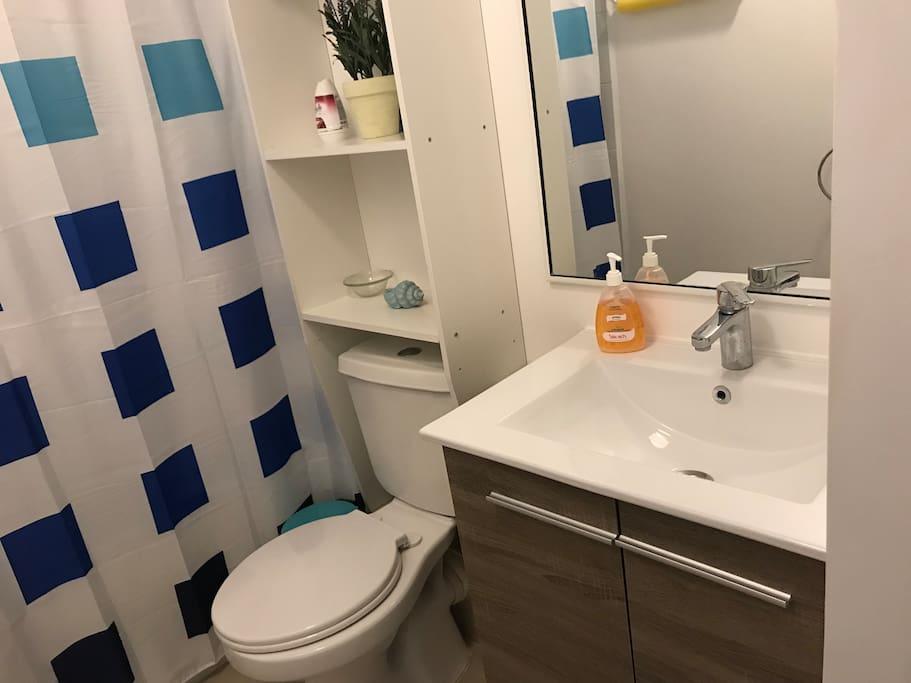 Baño dormitorio ppal con tina