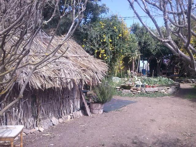 Alojamiento compartido en Naturaleza Viva. - Llanos de María Rivera - House