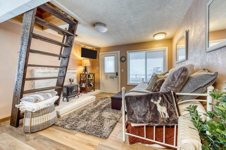 Newly-remodeled, dog-friendly studio w/beautiful ski & mountain views!
