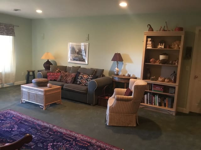 Large couch can be comfortable single bed in family room (a Bamboo foldable privacy screen is available). There is also a double bed in the corner of this room (not pictured).
