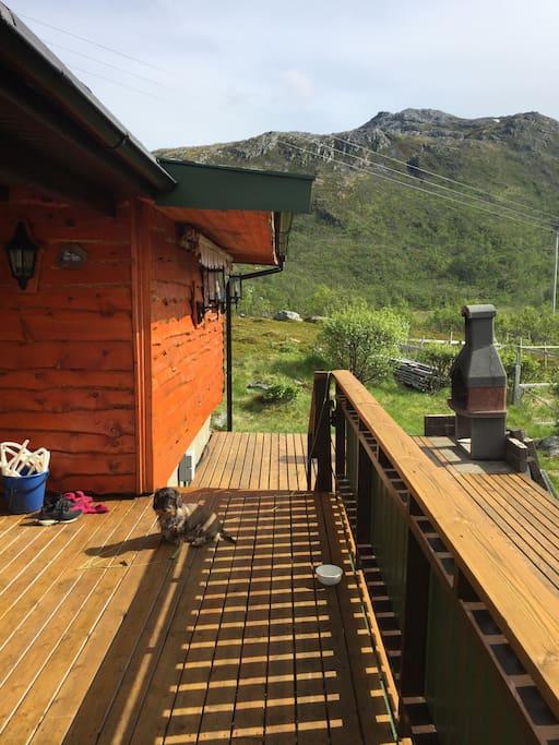 Fine uteplasser rundt hytta.