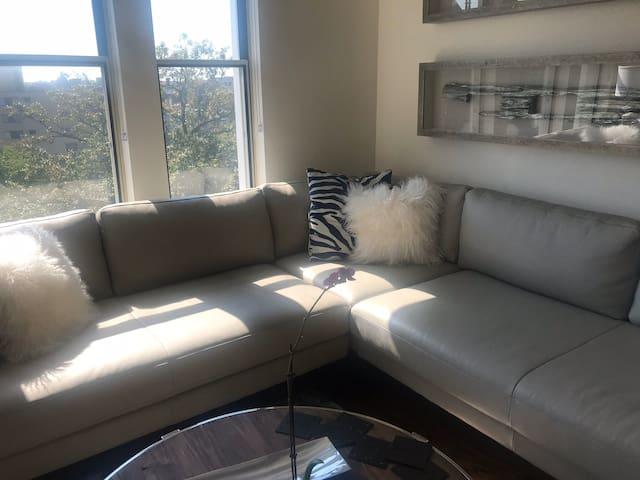 Shared Luxury Condo Home  w/ Athletic Gay Male