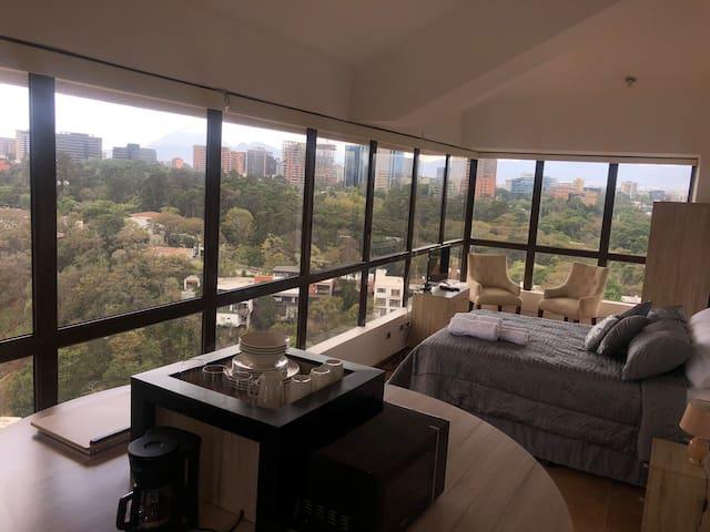 Estudio-apartamento en Penthouse, entrada independiente por elevador, único apto en el Nivel