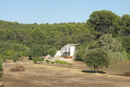 Relaxing country house in Llucmajor