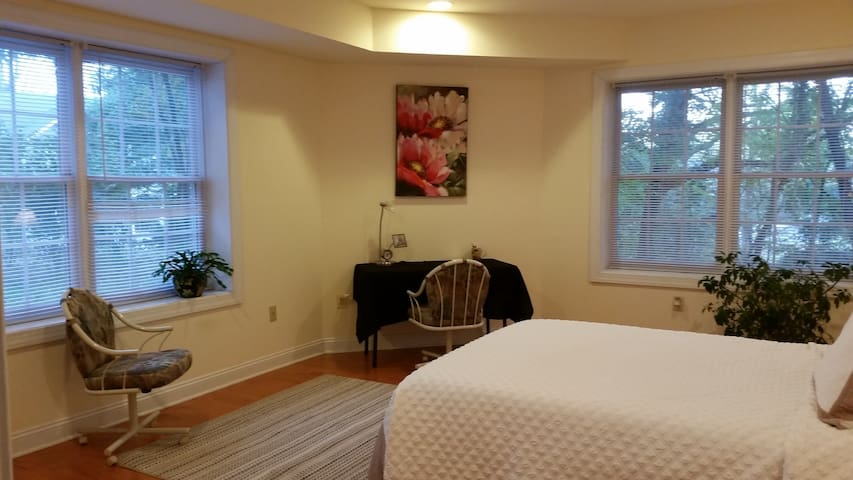 Bright, big pvt room, pvt bath in quiet green area - McLean - House