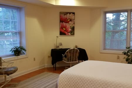 Bright, big pvt room, pvt bath in quiet green area - McLean