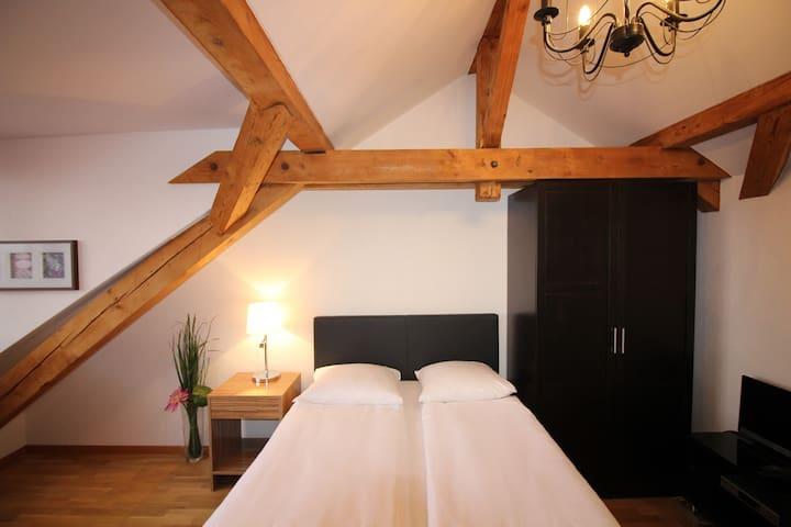 Swiss Star Hard Bridge - Studio