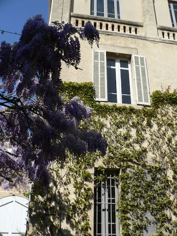 ChambreHortense/Noir et Lin - Salon-de-Provence - Bed & Breakfast