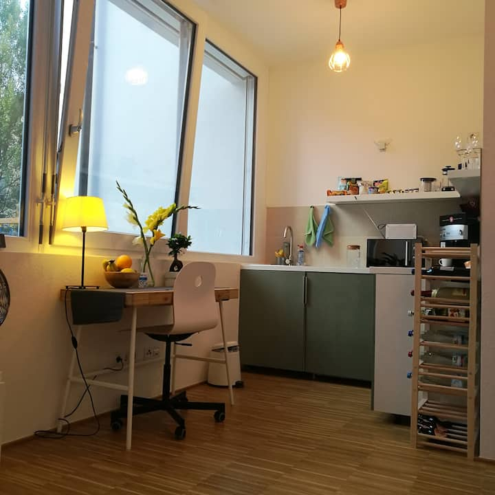Bright, efficiency apt. 7min from STR