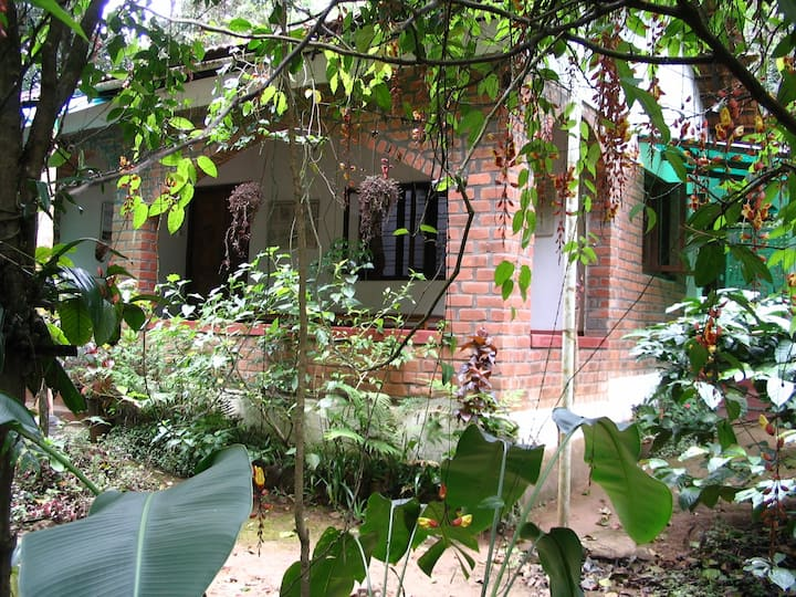 Rainforest Retreat Entire Cottage 4-6 persons