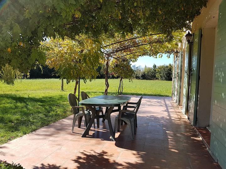 Mas Provençal dans les prés