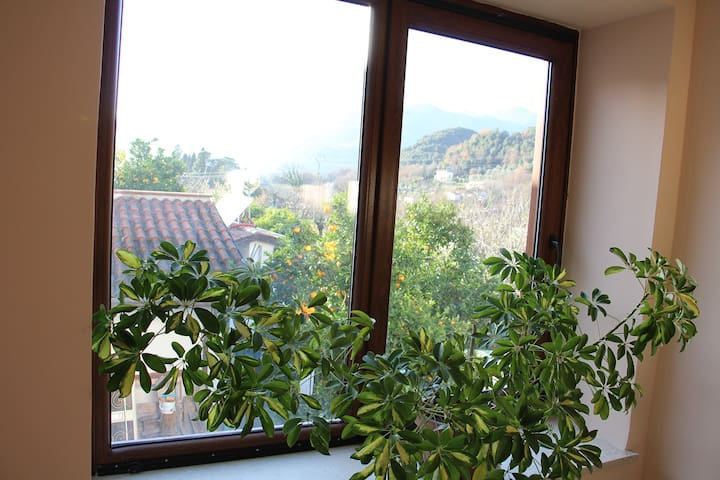 2 floors home next to the river - Sant'Elia Fiumerapido - Casa