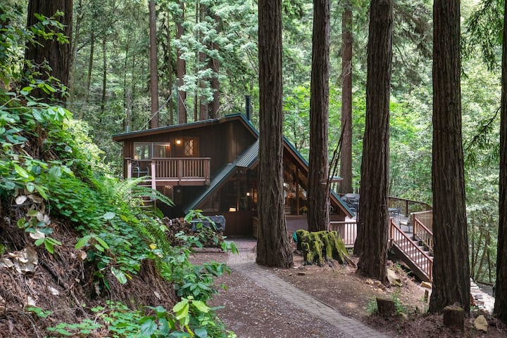 Redwood Retreat- every room with Redwood Tree view