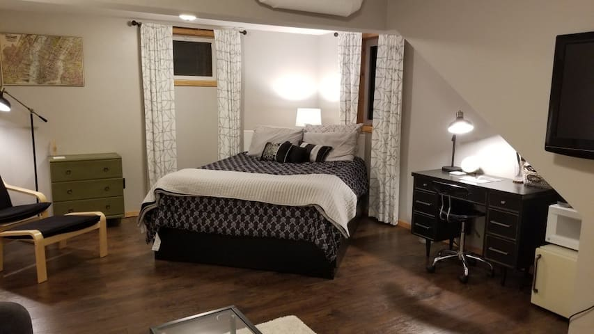Spacious guest suite (close to USD and downtown)