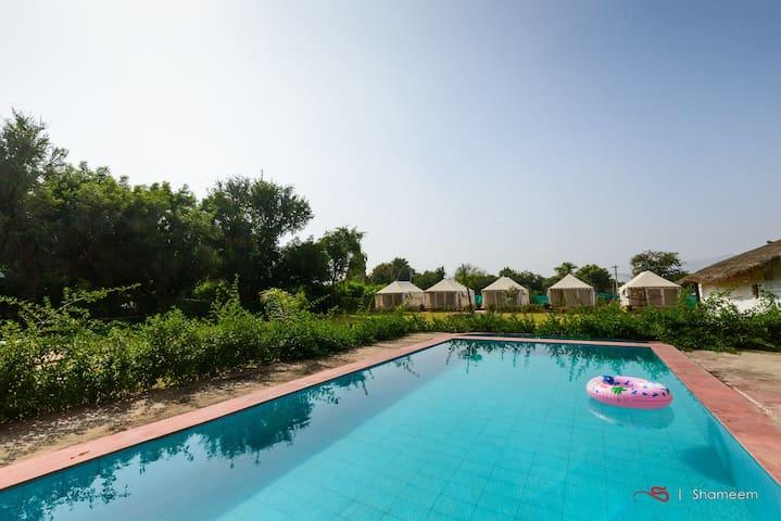Camping  Resort 2 - Pushkar - Telt