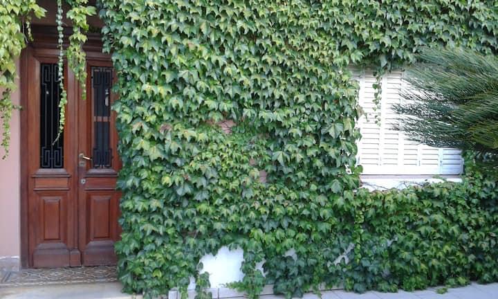 Villa Rosa ~ Green Quietude Outside Buenos Aires
